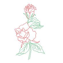 Cad Block of Roser, blomster in dwg